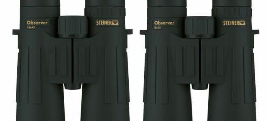 Steiner Observer