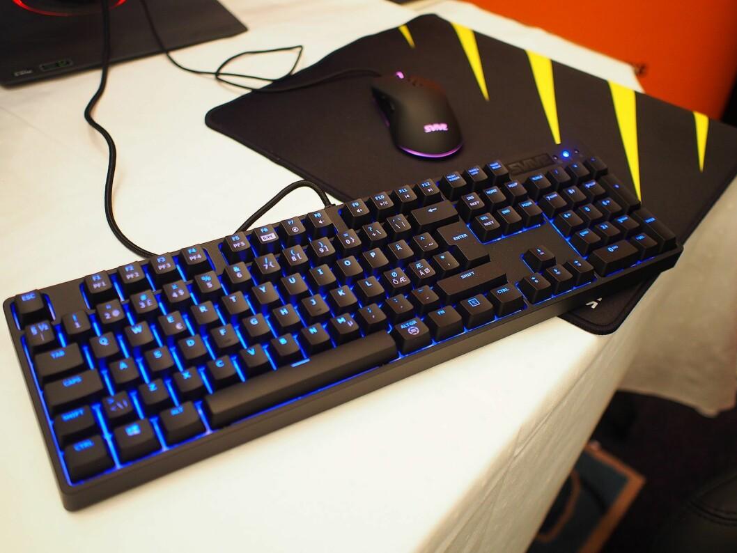 Spilltastatur og mus fra Itegra har lys i forskjellige farger. Foto: Jan Røsholm.