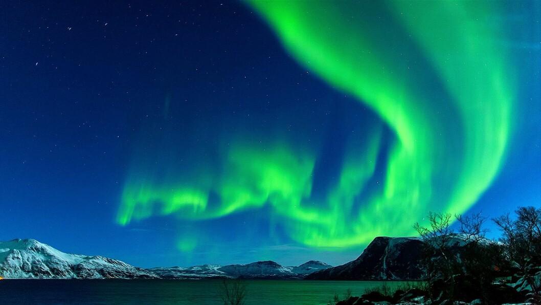Nordlyset fanget i Tromsø var utgangspunkt for komposisjonen «The Sound of Light», der den kunstige intelligensen i Huawei Mate 20 Pro ble brukt til å gjøre om lys til lyd. Bildet er ikke tatt med en Huawei-enhet. Foto: Kjetil Skogli.