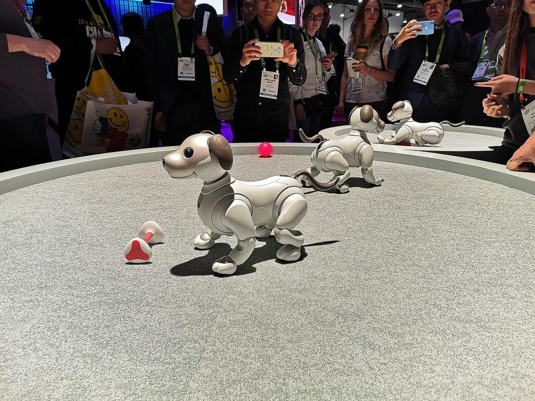 Sonys robothund Aibo er populær, men kan foreløpig kun kjøpes i USA og Japan. Foto: Marte Ottemo.