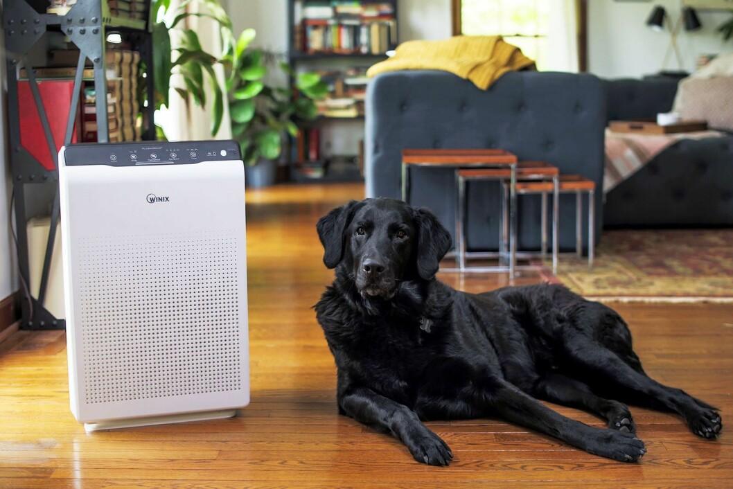 Luftrenseren Winix Zero har en kapasitet på 99 kvadratmeter og koster 3.500 kroner. og 4.200 kroner. Disse har en kapasitet på 99 og 120 kvadratmeter. Foto: Winix